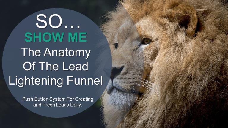 Lead Lightening Anatomy